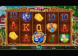 Oink Country Love Screenshot